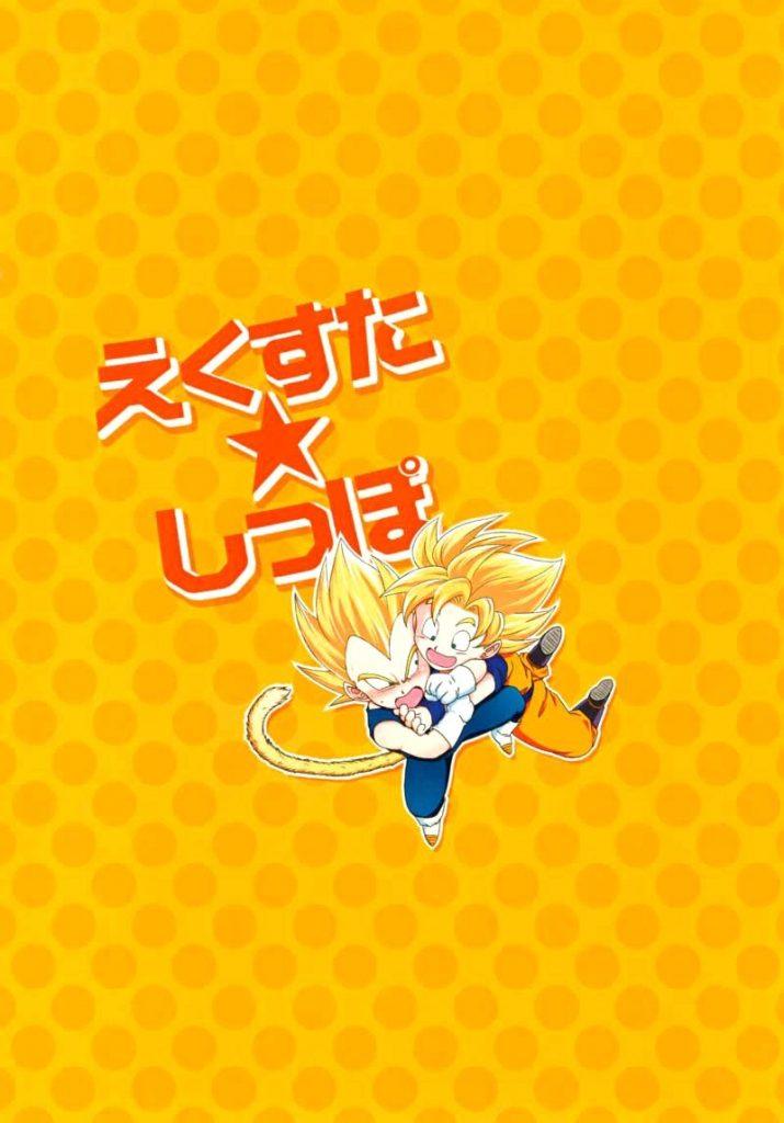 Dragon Ball Z doujinshi